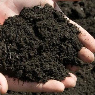 خاک معمولی باغچه